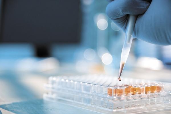 embriones humanos, ciencia,
