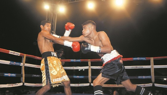 José Pérez solo ha sufrido una derrota y fue frente a Dixon Flores. Foto: Archivo