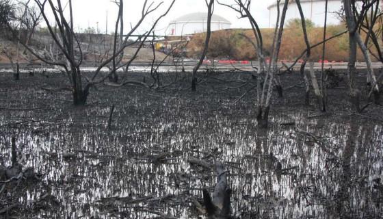 Puerto Sandino, desastre ambiental, Nicaragua
