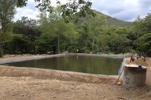 Cosechar Agua, Plataforma Nacional del Agua y la Vida, Agua