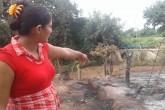 Niña muere tras 21 días de lucha contra graves quemaduras